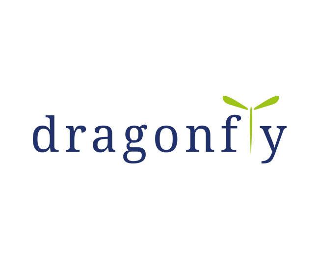 Dragonfly studio logo